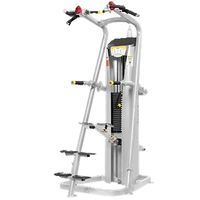ELEVATE DUAL STATION CHIN DIP ASSIST ED 107