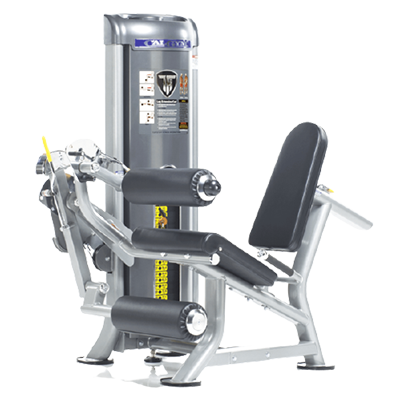TUFFSTUFF FITNESS CALGYM LEG EXTENSION   CURL